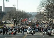Right to Life March in Washington DC