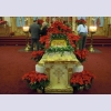 Poinsettias arranged by Mary Ann S. and Betty H.
